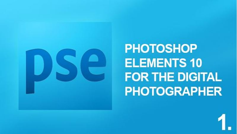 Picture of Photoshop Elements 10 Digital Photography
